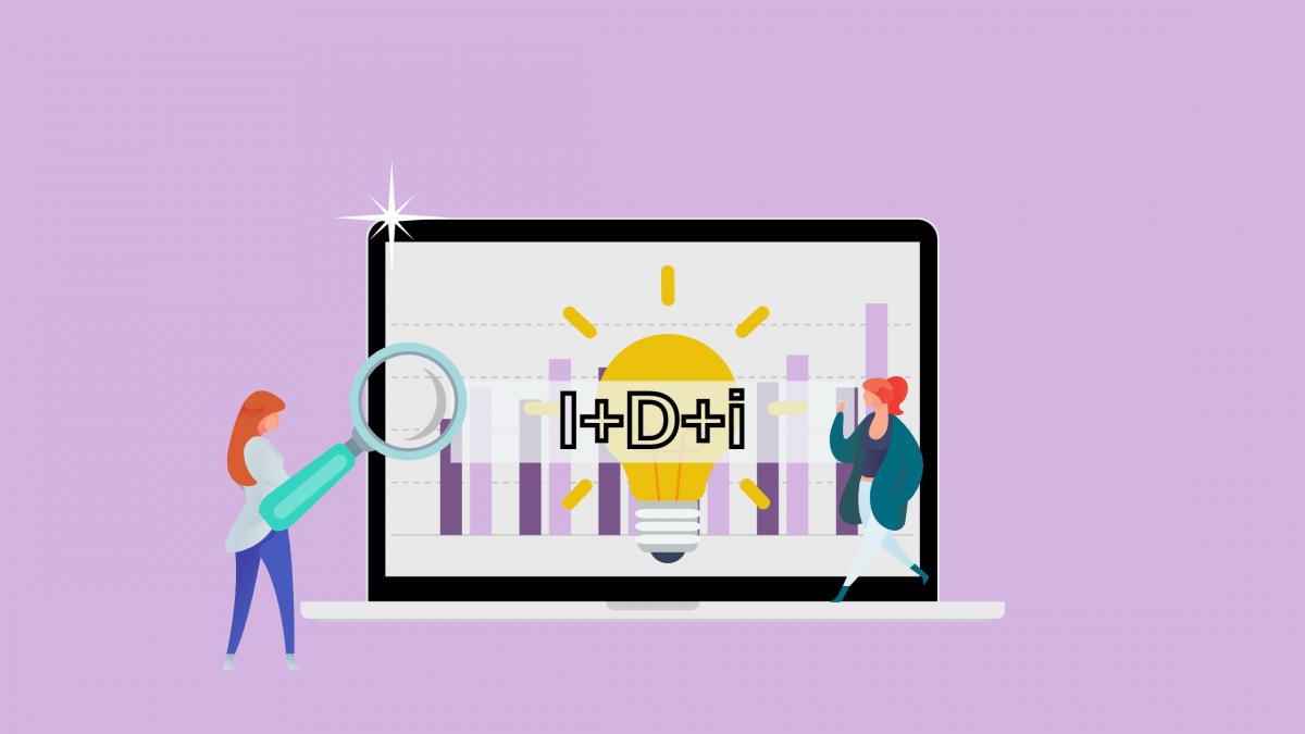 ¿Cómo Funciona la Gestión de Proyectos I+D+I?